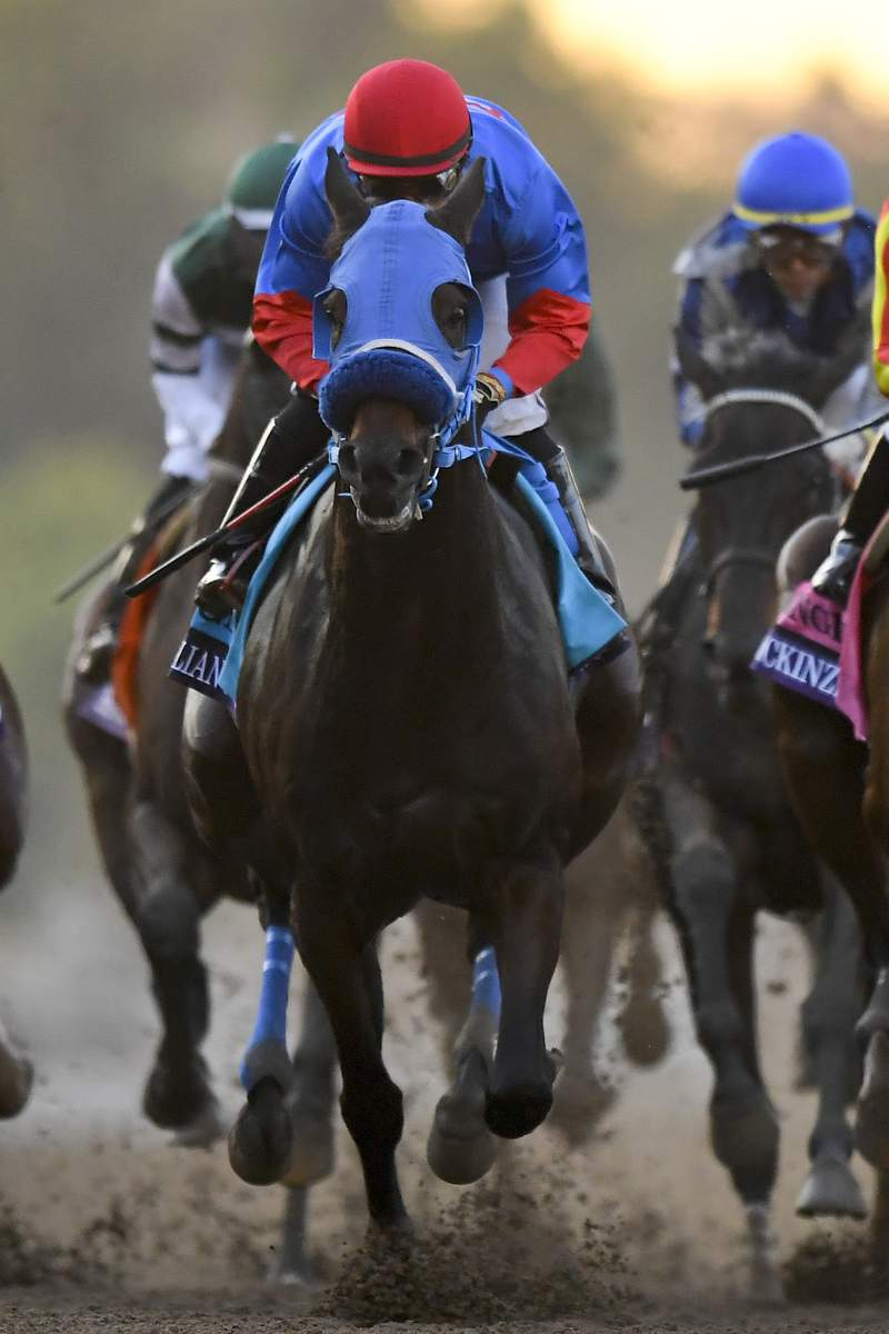 FILE - In this Nov. 2, 2019, file photo, Abel Cedillo rides Mongolian Groom in the Breeders' Cup Classic horse race at Santa Anita Park in Arcadia, Calif. A report on the death of Mongolian Groom in the Breeders' Cup Classic at Santa Anita says veterinarians missed opportunities to remove the gelding from the $6 million race because of time constraints or deficiencies in the process used to evaluate horses. In the 20-page report issued Wednesday, Jan. 15, 2020, Dr. Larry Bramlage identified six suggested improvements aimed at refining safety and evaluation protocols for future events. (AP Photo/Mark J. Terrill, File)