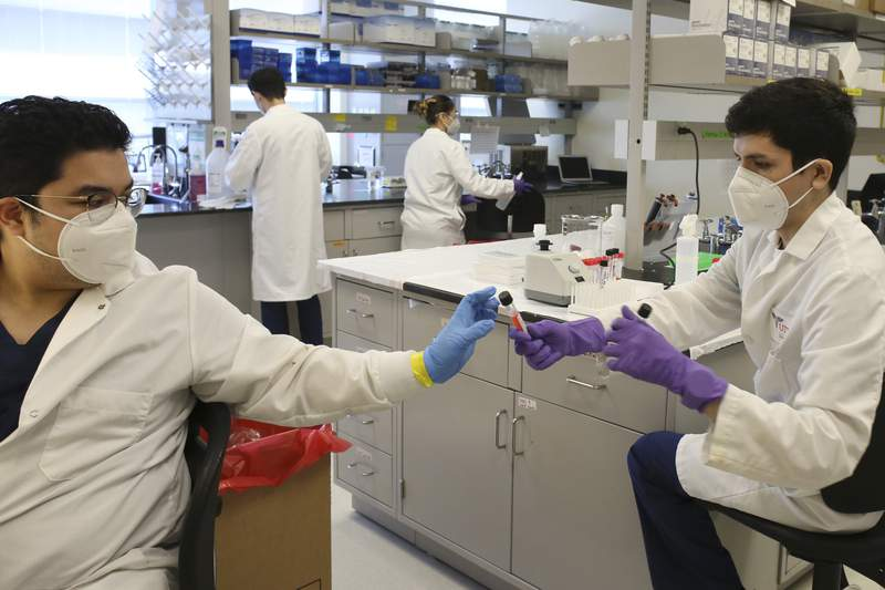 Lab technicians work with COVID-19 testing samples in this file photo.