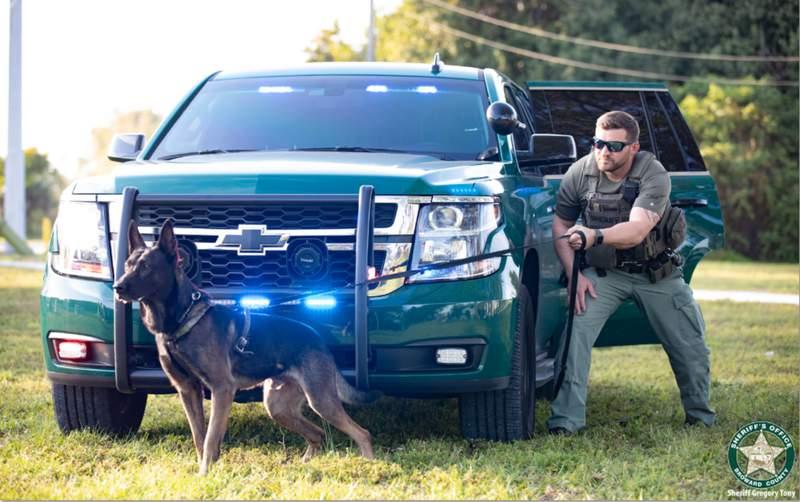 Broward Sheriff's Office K-9 Unit