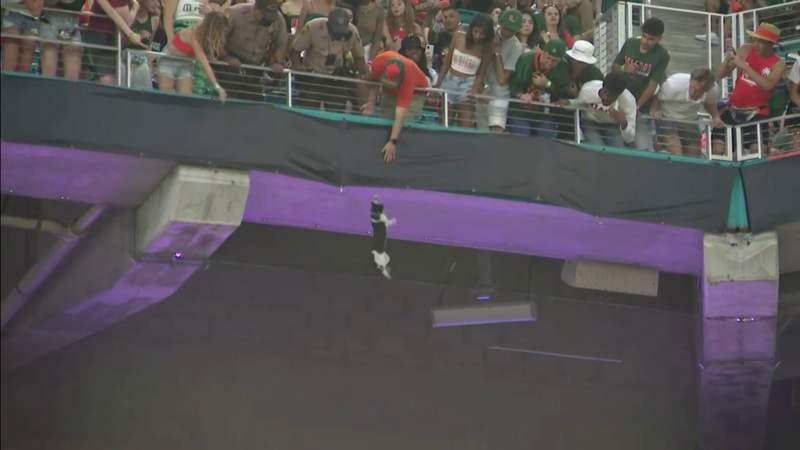Los fanáticos de los Miami Hurricanes usan bandera para atrapar a gato que  cae desde la cubierta superior en el Hard Rock Stadium