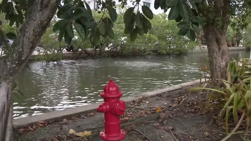 Third raw sewage leak springs in Fort Lauderdale