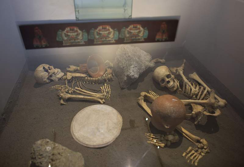 FILE - In this Oct. 8, 2015 file photo, the skeletons of sacrificed Spaniards are displyed inside a glass case at the museum of the Zultepec-Tecoaque archeological site in Tlaxcala state, Mexico. The National Institute of Anthropology and History published findings Monday, January 18, 2021, suggesting that Spanish conquistadores butchered at least a dozen women and their children in an Aztec-allied town where the inhabitants sacrificed and ate a detachment of Spaniards they had captured months earlier. (AP Photo/Rebecca Blackwell, File)