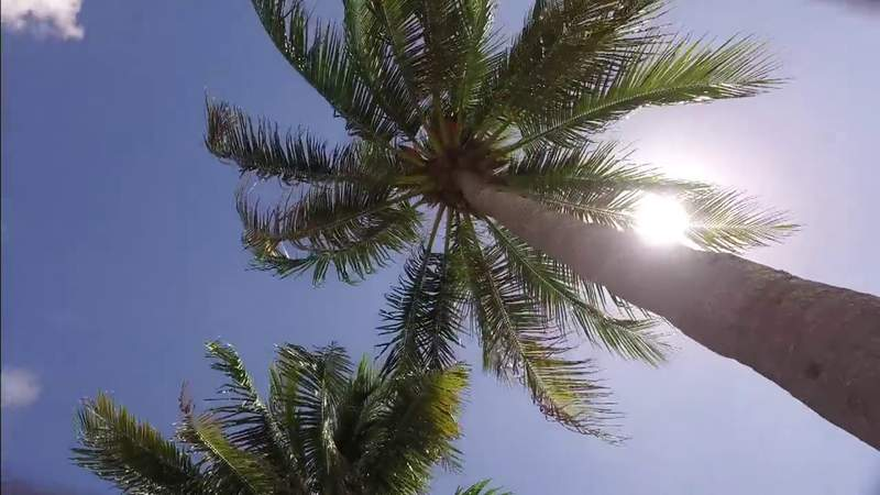 Florida Continues To Break Heat Records