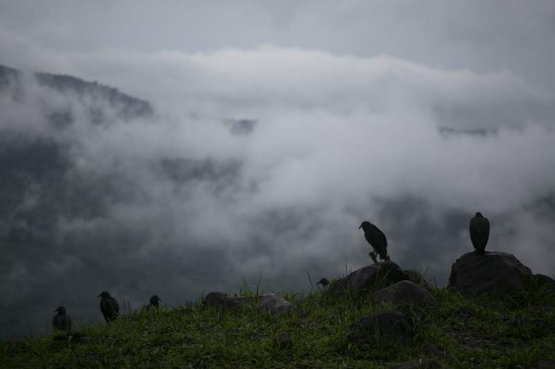 Rain clouds hover over mountains during tropical storm Amanda in Barberena, eastern Guatemala, Sunday, May 31, 2020. The first tropical storm of the Eastern Pacific season drenched parts of Central America on Sunday and officials in El Salvador said at least seven people had died in flooding. (AP Photo/Moises Castillo)