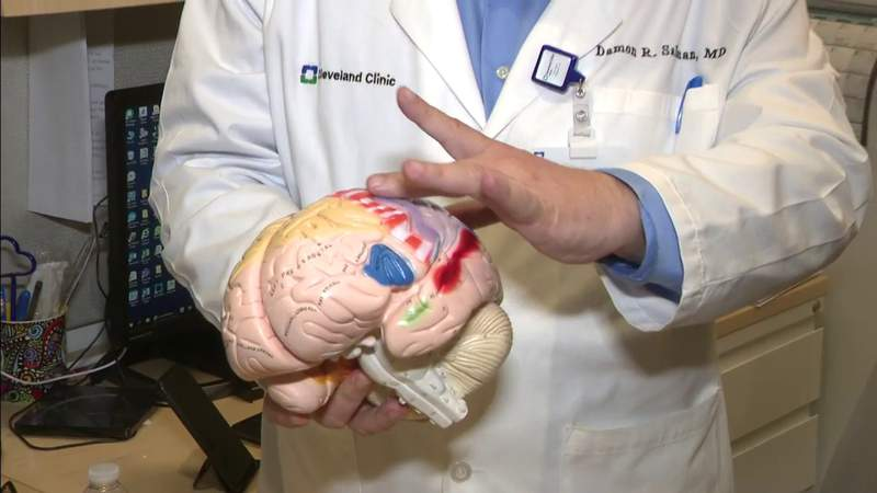 Study sheds light on blood pressure and brain health