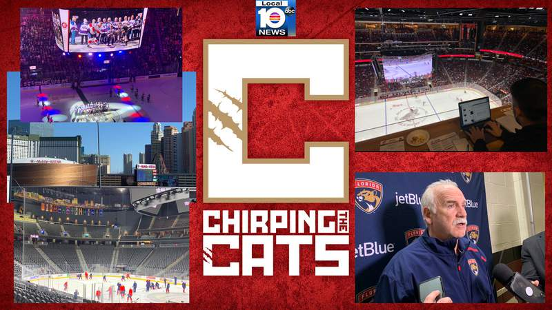 Photos from the Chirping the Cats road trip in Las Vegas, Nevada and Glendale, Arizona.
