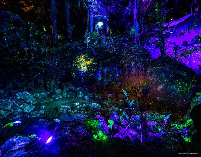 """Fairy queen at Fairchild Tropical Botanic Garden's """"NightGarden: A Magical Light Spectacular."""""""