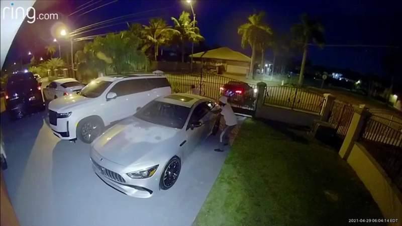 dos ladrones de autos