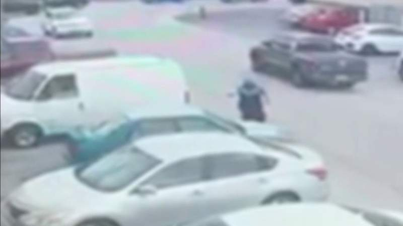 Video shows security guard shooting at alleged lobster tail thief