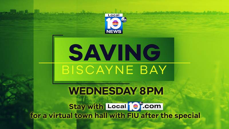 """Local 10's """"Saving Biscayne Bay"""" special airs Wednesday Sept. 2 at 8 p.m."""
