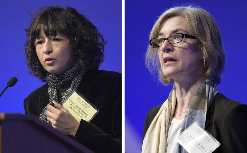 FILE - This Tuesday, Dec. 1, 2015 file combo image shows Emmanuelle Charpentier, left, and Jennifer Doudna, both speaking at the National Academy of Sciences international summit on the safety and ethics of human gene editing, in Washington. The 2020 Nobel Prize for chemistry has been awarded to Emmanuelle Charpentier and Jennifer Doudna for the development of a method for genome editing. A panel at the Swedish Academy of Sciences in Stockholm made the announcement Wednesday Oct. 7, 2020. (AP Photo/Susan Walsh, File)