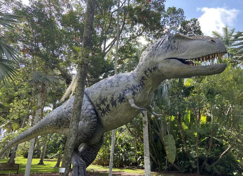 Jurassic Garden at Fairchild Tropical Botanic Garden in Miami.