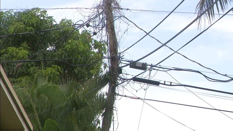 Lawmaker wants action after Local 10 investigation into rotting utility poles