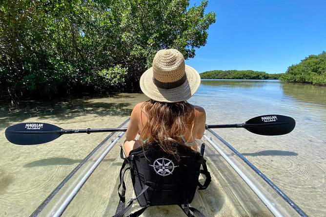 The 'Clear Kayak Tour of Shell Key Preserve and Tampa Bay Area' is Tripadvisor's Top Experience in the US.