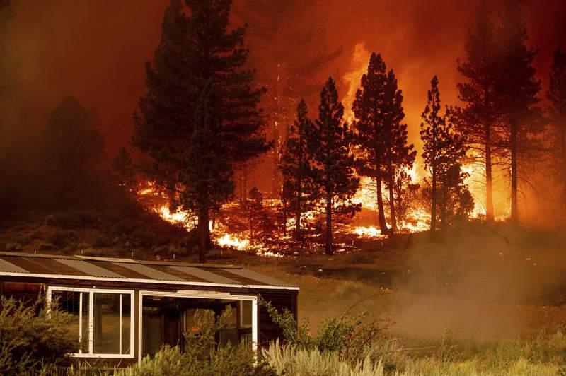 Un incendio arde en la comunidad de Markleeville, en el condado de Alpine, California, el sbado 17 de julio de 2021. (AP Foto/Noah Berger)