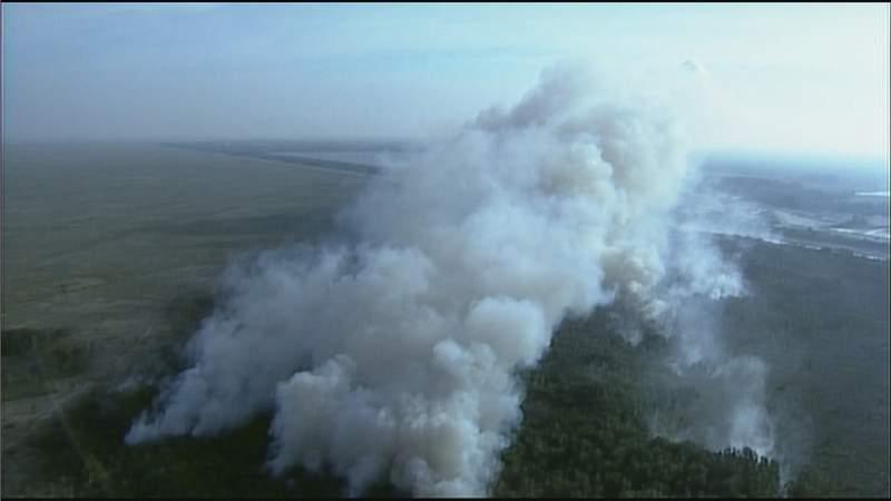 A brush fire burns April 20 at Everglades National Park.