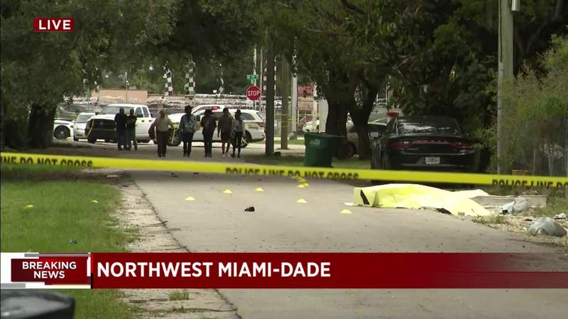 Man killed after dispute in Miami-Dade, cops say