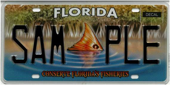 The 'Conserve Florida's Fisheries' specialty license plate is the latest specialty plate available to Florida residents.