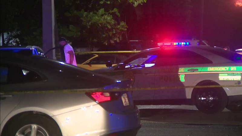 Officers search for driver in hit-and-run crash in Pinewood
