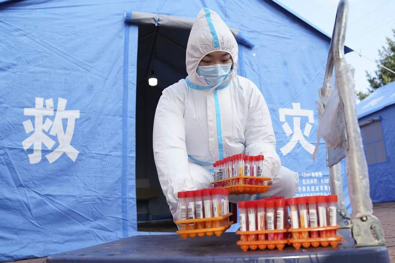 In this photo released by China's Xinhua News Agency, a worker in protective clothing handles COVID-19 test samples in Bayan County of Harbin city in northeastern China's Heilongjiang Province, Monday, Sept. 27, 2021. A city in northern China has euthanized three housecats after they tested positive for COVID-19, according to a local media report. The authorities in Harbin said the action was taken because there was no course of treatment for animals with the disease and they would have endangered their owner and residents of the entire apartment complex in which they lived, the Beijing News online said. (Wang Jianwei/Xinhua via AP)