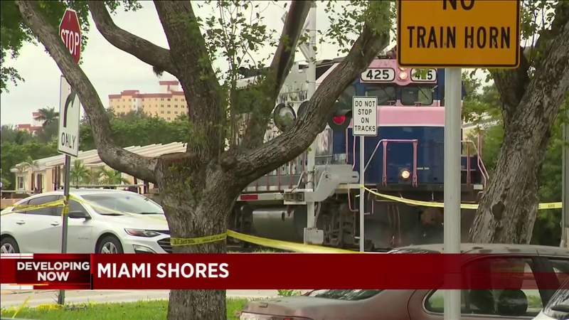 Man killed by train after running following domestic violence incident