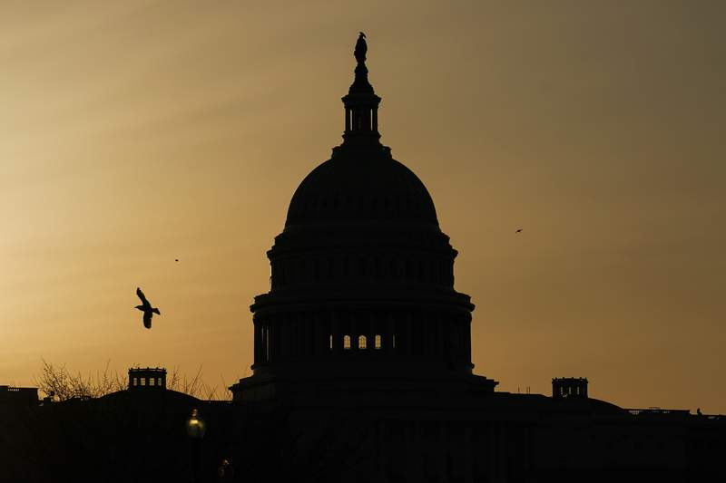 FILE - In this March 4, 2021, a bird flies near the U.S. Capitol dome at sunrise in Washington. The Republican fundraising committee dedicated to flipping the House in the 2022 midterm elections says it raised more than $105 million this year through September 2021. The record haul marks a 74% increase over last cycle and includes $25.8 million raised in the third quarter of the year. (AP Photo/Carolyn Kaster, File)