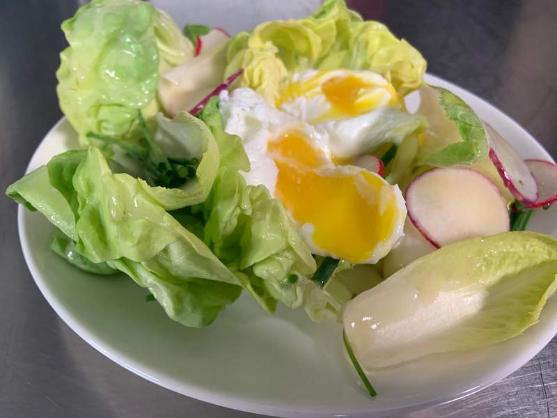 Poached Egg Served with Fresh Green Salad