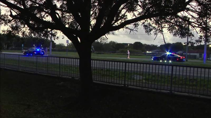 Woman fatally struck by vehicle in Homestead