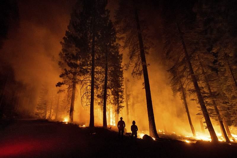 Unos miembros del Departamento Forestal y de Proteccin contra Incendios de California supervisan un operativo contra incendios, mientras las llamas arrasan con el bosque nacional de Lassen, el lunes 26 de julio de 2021. (AP Foto/Noah Berger)