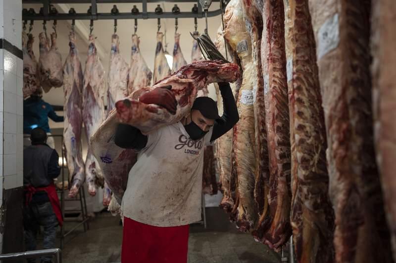 Un trabajador transporta una media res en Buenos Aires, Argentina, el mircoles 19 de mayo de 2021. Los productores agropecuarios argentinos iniciaron el jueves un paro de ocho das contra el cierre de las exportaciones de carne vacuna dispuesto por el presidente Alberto Fernndez.  (AP Foto/Vctor R. Caivano)