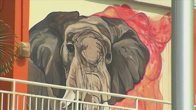 Carol City Middle School got a beautiful makeover as local artists painted 30 murals at the school.