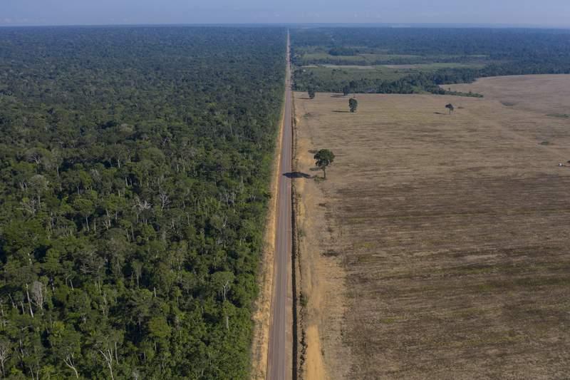 En esta imagen del 25 de noviembre de 2019 se ve la ruta BR-163 entre el Bosque Nacional de Tapajos, izquierda, y un campo de soya en Belterra, estado de Par, Brasil. (AP Foto/Leo Correa, Archivo)