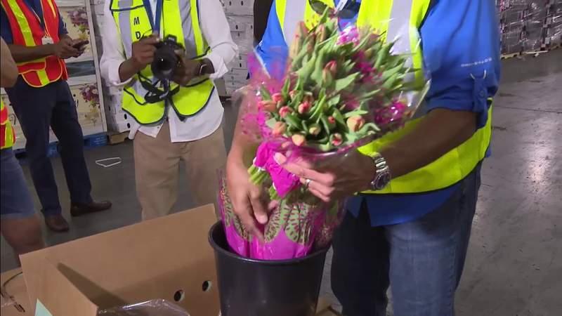 flores para pasar por el Aeropuerto Internacional de Miami