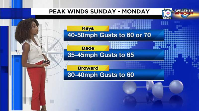 Saturday is a good day to prepare for windy Sunday in South Florida
